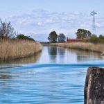 Captain Igloo® - canali di Bibione, escursioni con l'imbarcazione di Captain Igloo®